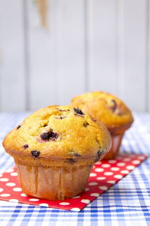 Two blueberry muffins on a red dots clothes photo