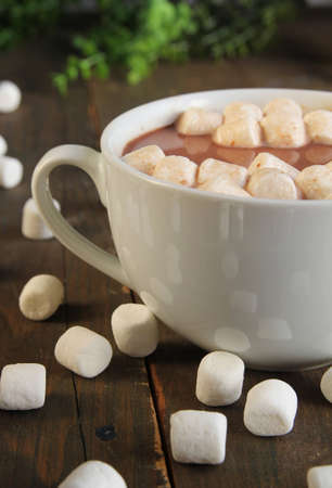 Hot chocolate with marshmallow in a white cup photo
