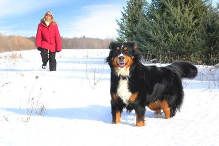 彼女の犬と冬の間に歩いて赤いジャケットの女性