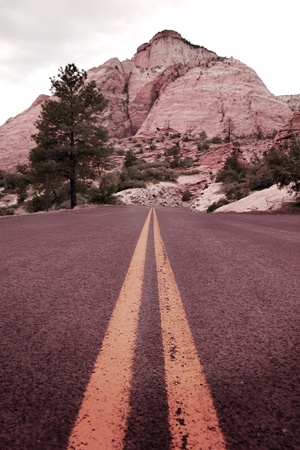 Yellow lines on the road through the mountain at Zion Canyon, Utah Stock Photo - 14814020