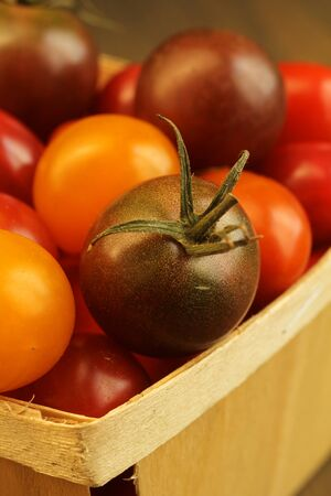Close up of a basket full of cherry tomato orange, yellow and purple.