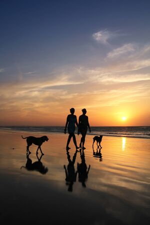 People silhouettes walking on a beach with dogs at sunset  Stok Fotoğraf
