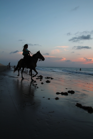 Woman on horse during the sunset at the beach photo