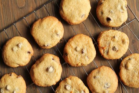 chocolate chip cookie: Top view of fresh chocolate chips cookies