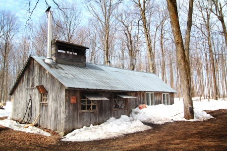 beautiful and aged sugar shack during spring season in Quebec, Canada