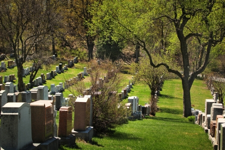 Beautiful day in a cemetery during spring season Stock Photo