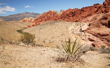 Scenic view of red rock canyon in Nevada, united states Stock Photo - 21376390