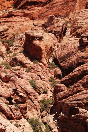 Close up of  red rock at red rock canyon in Nevada photo