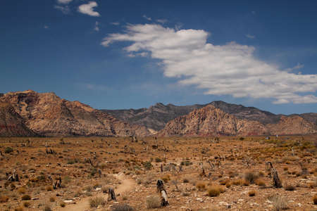 Panorama of red rock canyon in Nevada, united states photo