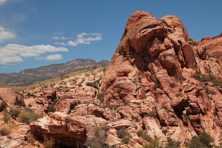 Beautiful landscape at red rock canyon in Nevada, united states Stock Photo - 21376485