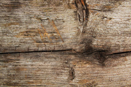 wood panel: Close up of a panel of  barn wood
