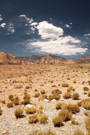 nevada: Panorama of the desert at red rock canyon in Nevada, united states Stock Photo