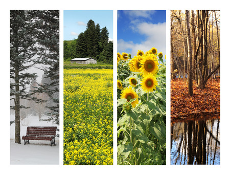 Collage with 4 pictures showing four seasons
