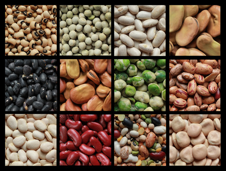 Collage showing different kind of beans like green peas, black eyed beans and brown fava  photo