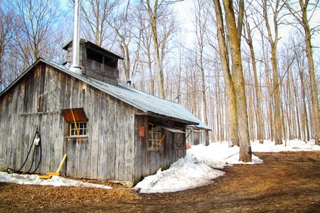 Beautiful and aged sugar shack during spring season in Quebec, Canada photo