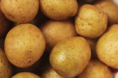 yukon: Close up of yukon gold potatoes Stock Photo