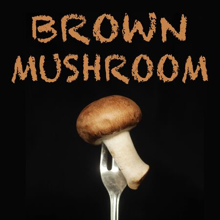 Brown mushroom on a fork on a black background Imagens - 37788694