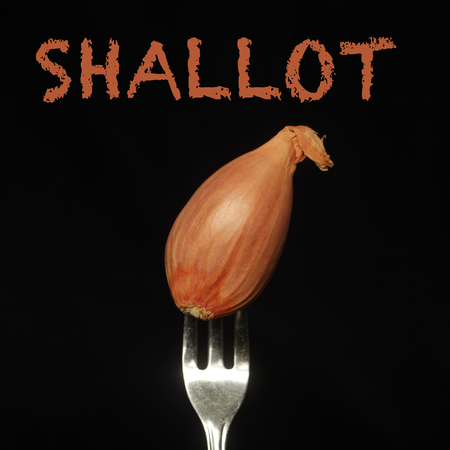 Shallot on a fork on a black background Banco de Imagens