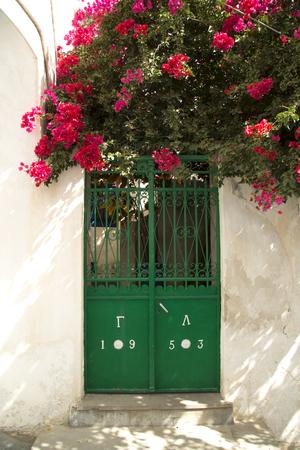 green door: Bougainvillea under a green door in Naxos, Greece