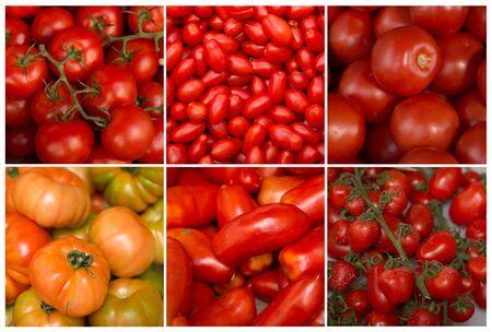 トマトの種類のコラージュ