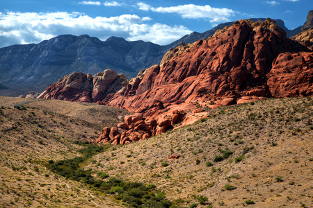Landscape into Red Rock Canyon in Nevada with mountains in background