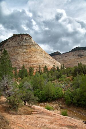 Checkerboard Mesa at Zion National park in Utah, United States 版權商用圖片