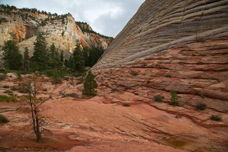 Checkerboard Mesa at Zion National park in Utah, United States Stock Photo