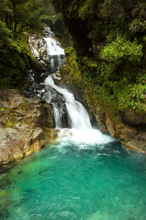 Falls creek waterfall near MIlford sound in South island in New Zealand