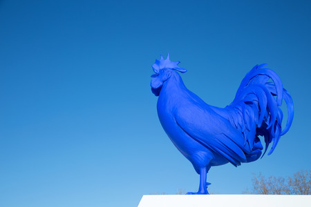 MINNEAPOLIS-MINNESOTA, APRIL 7, 2018:  Cock is a sculpture of a giant blue rooster by the German artist Katharina Fritsch.  This one is displayed garden at the Walker Art Center in Minneapolis Banque d'images - 100333657