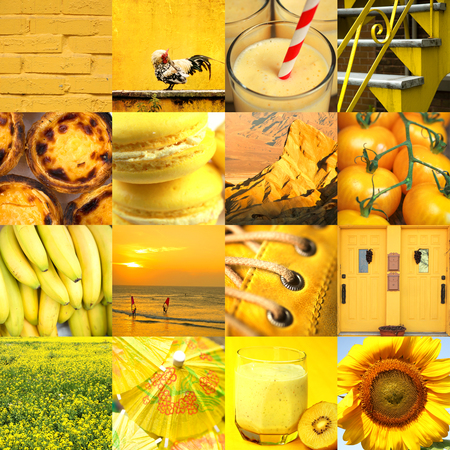 Collage of 16 different things in different gradient of yellow