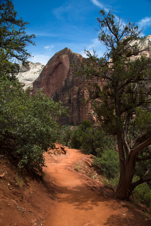 Deertrap mountain in Zion National Park in Utah in United States Stock Photo