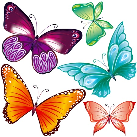 butterfly background: Coloe butterflies set on white Illustration