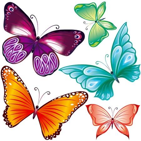 butterflies flying: Farfalle Coloe impostato su bianco
