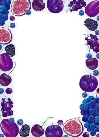 fichi: Telaio di frutti e bacche Lilla Vettoriali