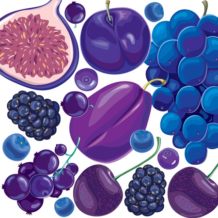 Mix blue and lilac fruits and berries Stock Vector - 10032763