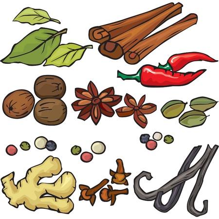 spezie: Spezie set di icone Vettoriali
