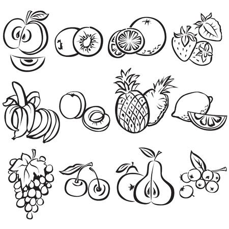 Stylized fruit vector set on a white background