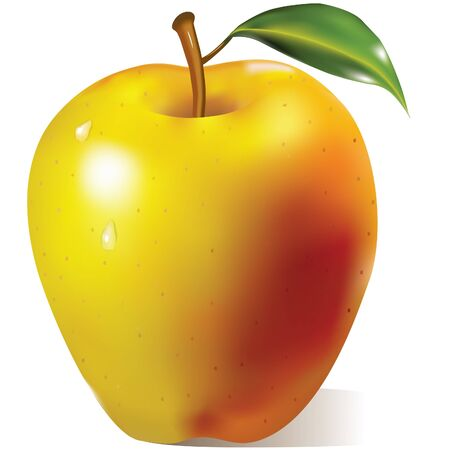 yellow apple: Yellow apple with green leaf Illustration