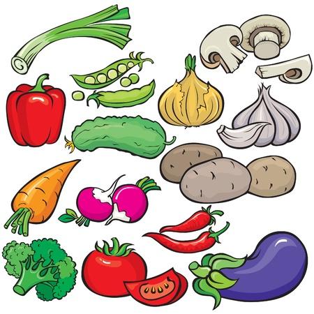 cebollas: Conjunto de iconos de verduras
