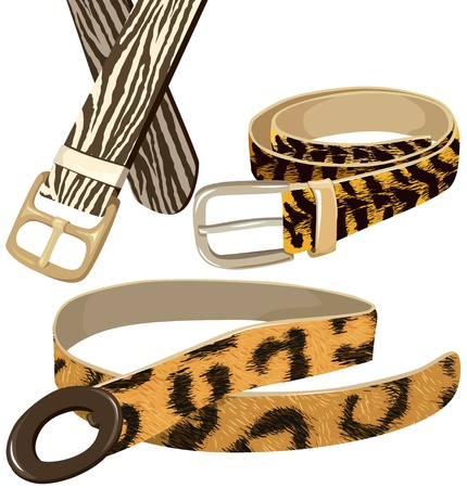 Belts with texture wild animal skins Stock Vector - 10786618