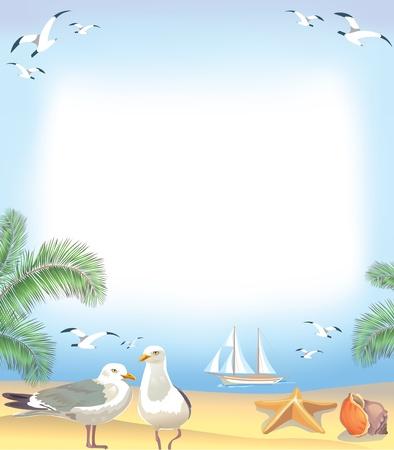 mouettes: Plage de la mer cadre