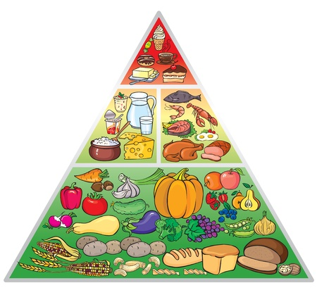 carbohydrate: Illustration of food pyramid Illustration