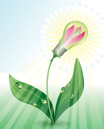 lily flowers: Light Bulb as a lily flower symbolizes the environmental energy. Contains transparent object.