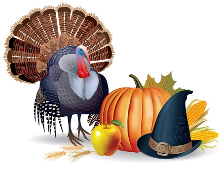 Illustration of the attributes  Thanksgiving  Turkey, pumpkin hat  It contains transparent objects EPS 8  Illustration