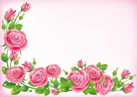 Frame of roses  Illustration contains transparent object  Vector