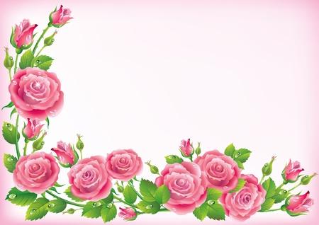 Frame of roses  Illustration contains transparent object  Illustration
