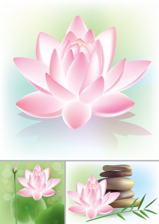 Lotus. Contains transparent objects.