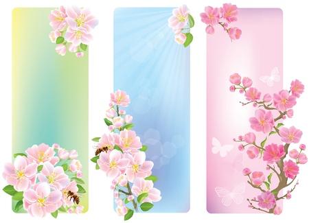 virágzó: Függőleges bannerek a virágos ága tartalmaz átlátszó tárgyak