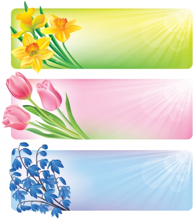 Horizontal spring banners of flowers. Contains transparent objects Stock Vector - 17195480