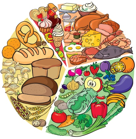 apples and oranges: Protein Carbohydrate Diet  Illustration